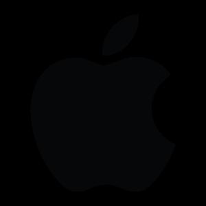 cambiamos el táctil + LCD iPad Mini 3